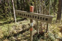 MCE Tredagars offroad till Falun 2021